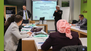 Training course on: Mediterranean Innovation Ecosystems in the Agrofood sector - CIHEAM Bari, 15-18 January 2018