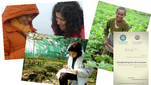 Call for papers: UfM-CIHEAM joint publication - Strengthening the role of women, obstacles and opportunities in rural and agricultural areas