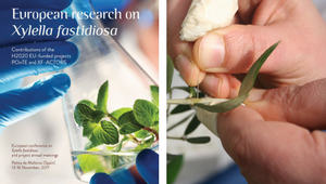 Research outcomes on Xylella fastidiosa published by XF-ACTORS and POnTE projects
