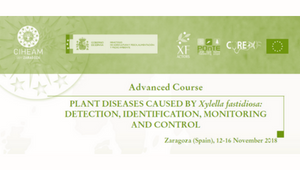 """Advanced Course on """"PLANT DISEASES CAUSED BY Xylella fastidiosa: DETECTION, IDENTIFICATION, MONITORING AND CONTROL"""""""