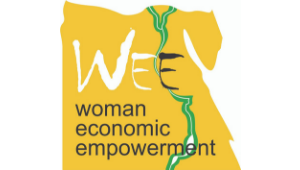 WEE Project final seminar | Cairo (Egypt), 22 January 2019
