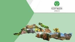 Compendium on the plant health research priorities for the Mediterranean region