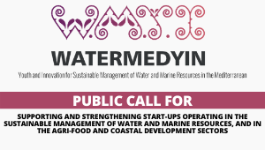 "PUBLIC CALL FOR ""Supporting and Strengthening START-UPS operating in the sustainable management of water and marine resources, and in the agri-food and coastal development sectors"""